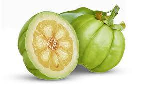 cos'è la garcinia cambogia pianta frutto